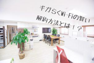 ギガらくWi-Fi画像