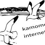 かもめインターネットの評判はどう?口コミや速度調査、料金詳細まとめ